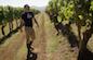 Post image for Chatting with: Jeff Vejr, Oregon Winemaker. Part One